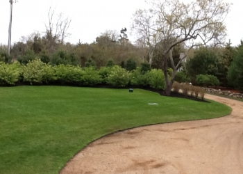 lawn-pictures-115