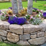 Tree Surround Stone Garden