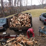 splitting wood from down trees